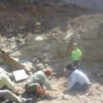 Working around the skeleton elements at the Katie site.