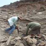 Removing the overburden from the Katie site. This was hard-rock digging.