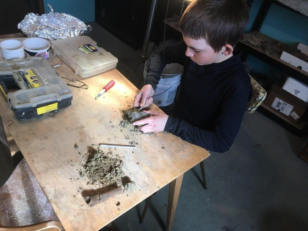 Luke removing matrix from a theropod digit fossil discovered on 4/7/2020.